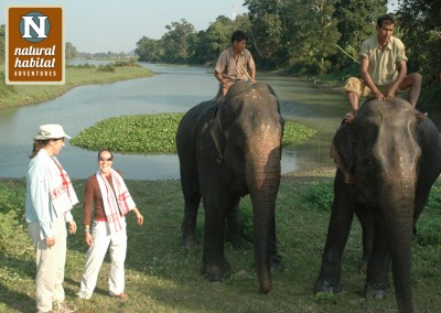The Grand India Wildlife Adventure