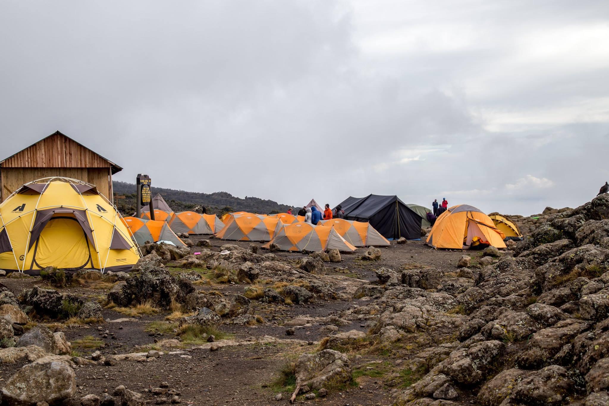 Kilimanjaro Base Camp