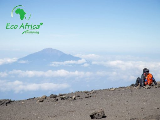 International Women's Day Expedition & Safari to Kilimanjaro