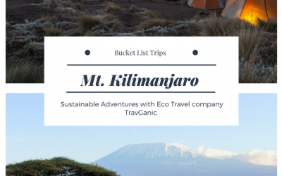 Why Mt. Kilimanjaro Should be on Your Bucket List