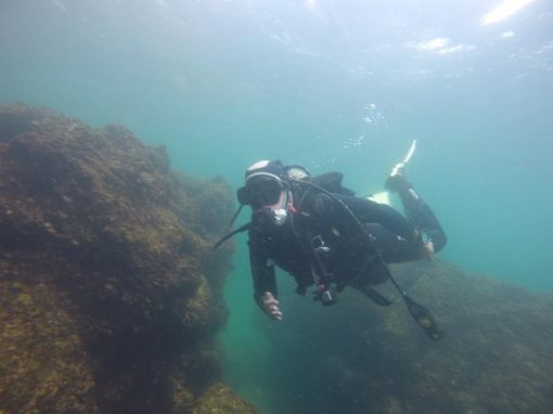 Eco-Dive in The Azores
