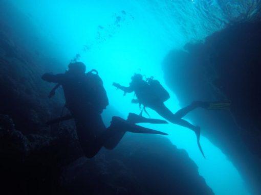 Eco-Dive Course in Albufeira